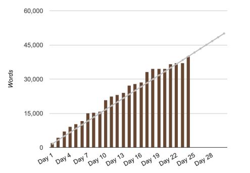 NaNoWriMo graph w4